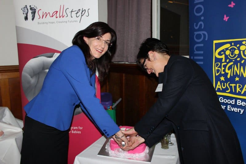 2014 Small Steps Opening